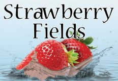 Strawberry Fields Flavor E-Liquid