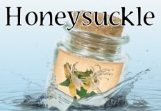 Honeysuckle Flavor E-Liquid