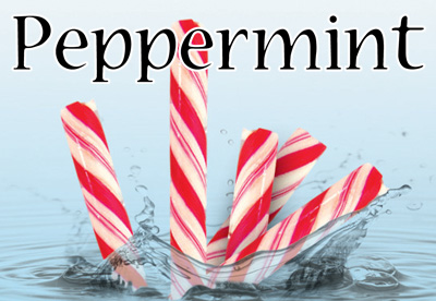 Peppermint Flavor E-Liquid
